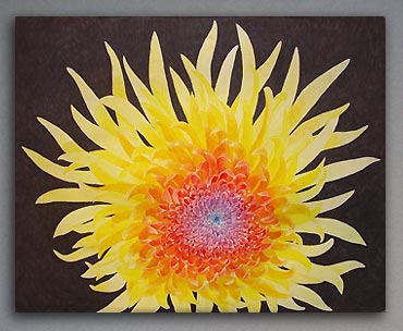 Colored pencil drawing of giant chrysanthemum